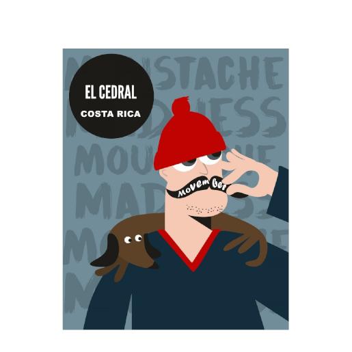 Java Coffee - Kostaryka El Cedral kawa ziarnista 250g